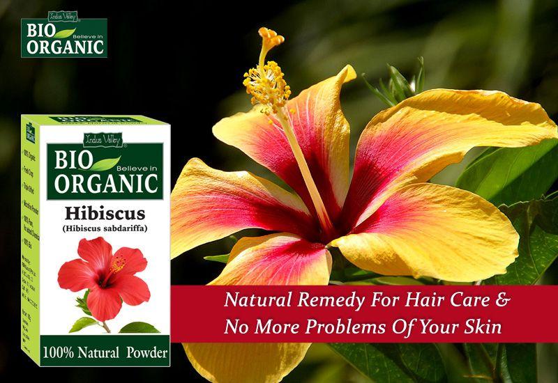 Organic Hibiscus Flower Powder Hibiscus Hibiscus Flowers Ayurvedic Herbs