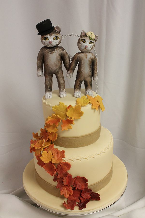 Cat Wedding Fall Google Search