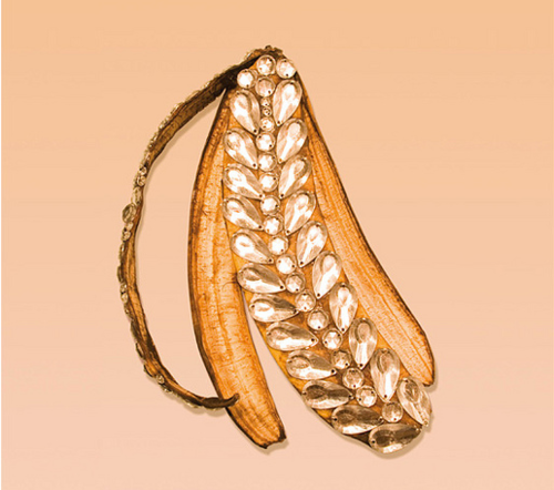 Bedazzled banana