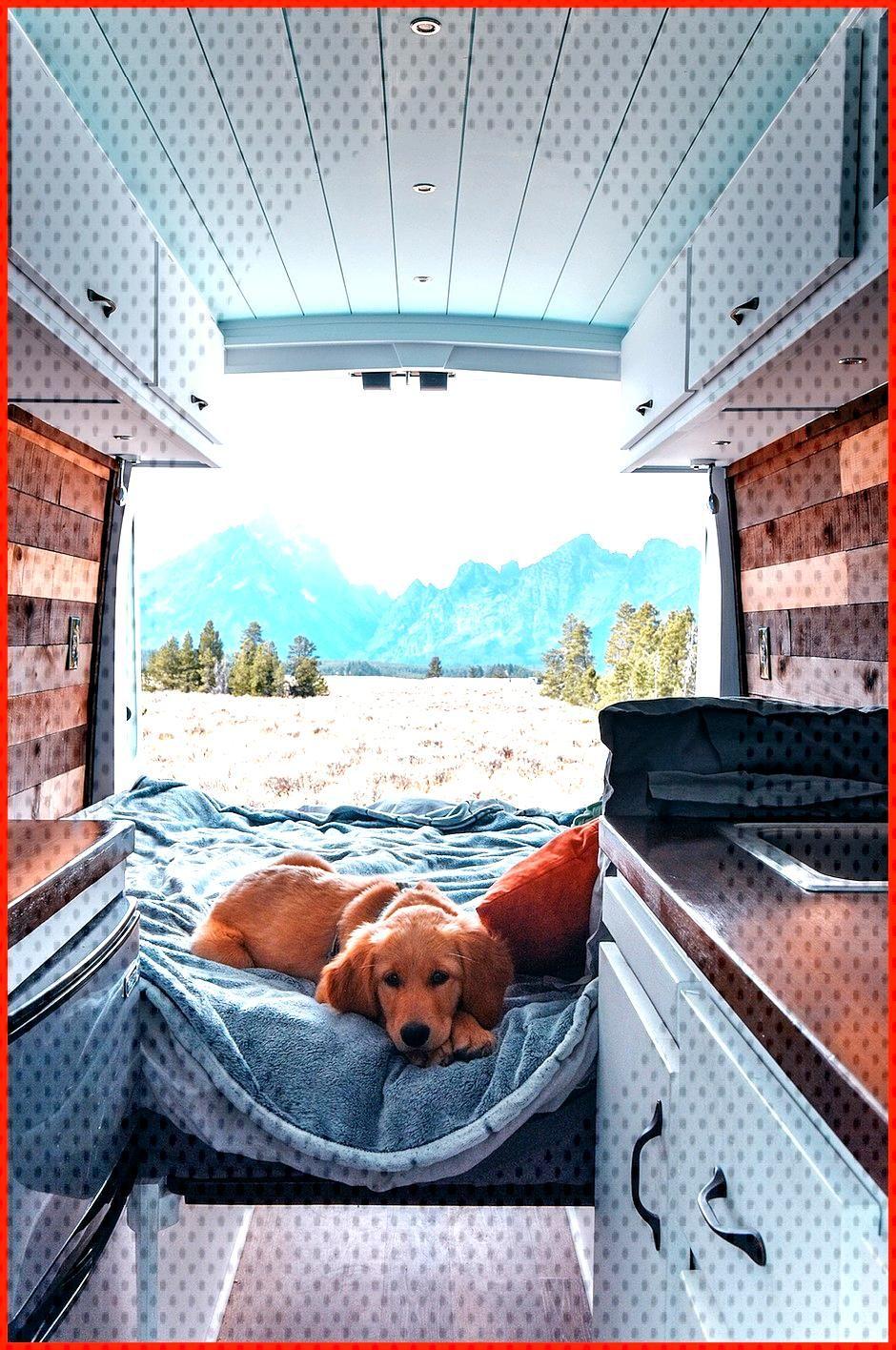 10 Amazing School Bus Campers Brilliant 10 Amazing School Bus Campers www camperlife co  The very l