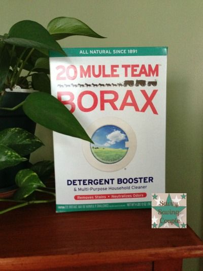 Mule Team Borax For Bed Bugs