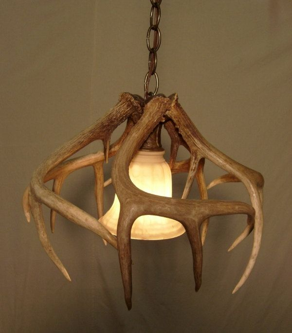 Real whitetail antler pendant light 23940 via etsy house real whitetail antler pendant light 23940 via etsy aloadofball