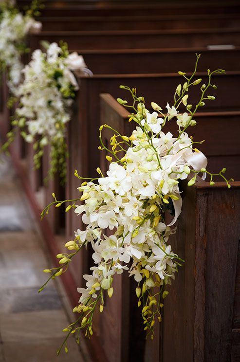 Clusters of white dendrobium orchids tied with satin ribbons adorn i love these for your aisle will incorporate some phaelanopsis orchids to match your bouquet we could add a little color flowers or ribbons if you wish junglespirit Images