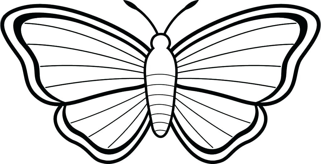 Simple Butterfly Coloring Pages For Adults Printable Free Pdf Butterfly Coloring Page Butterfly Drawing Butterfly Drawing Images