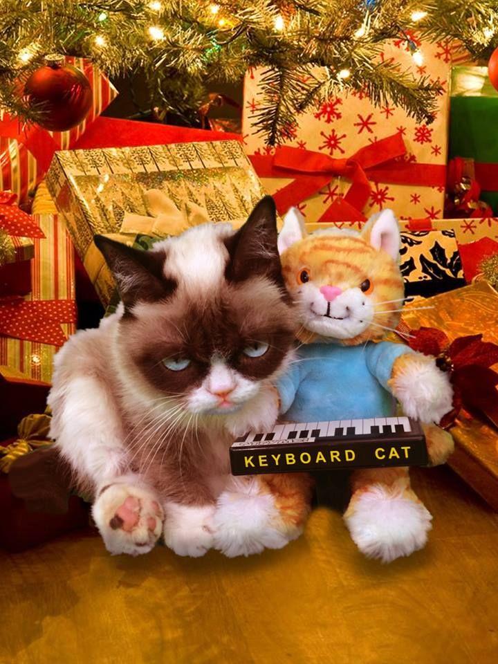 Tardar Sauce gets a Keyboard Cat doll for Christmas Dec