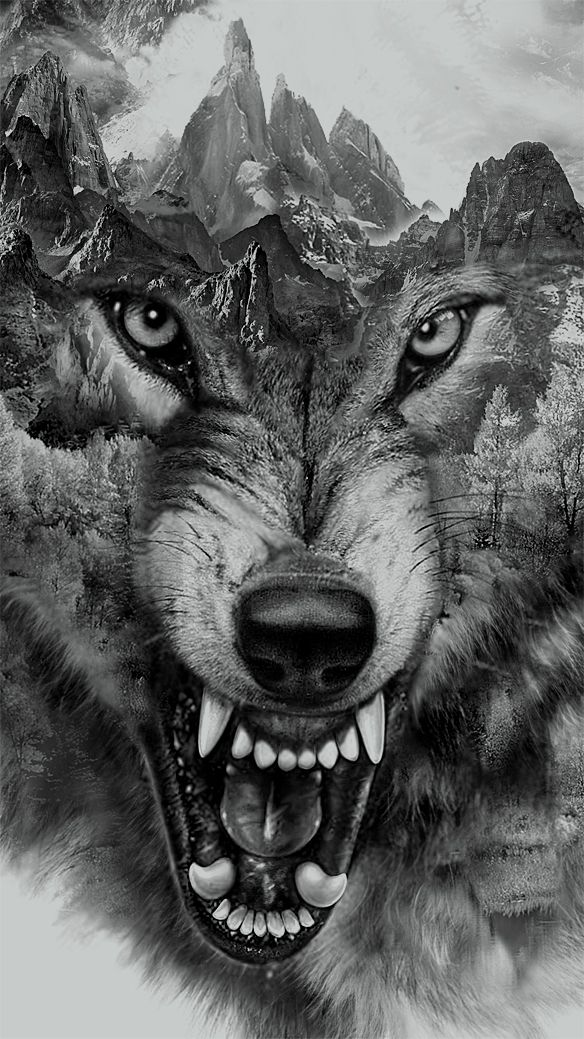 Wolf Collage | printed tee design for Zara