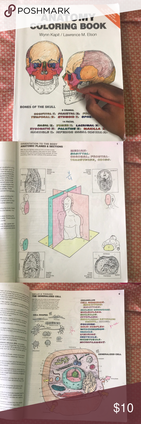 The Anatomy Coloring Book 4th Edition The Anatomy Coloring Book 4th Edition A Coloring Book With Anything Anantomy Coloring Books Anatomy Coloring Book Books