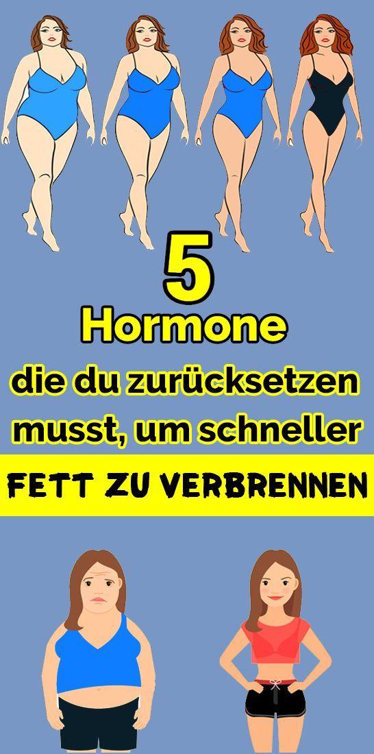 5 Hormone, die du zurücksetzen musst, um schneller Fett zu verbrennen - Gesundheit und fitness ,  #d...
