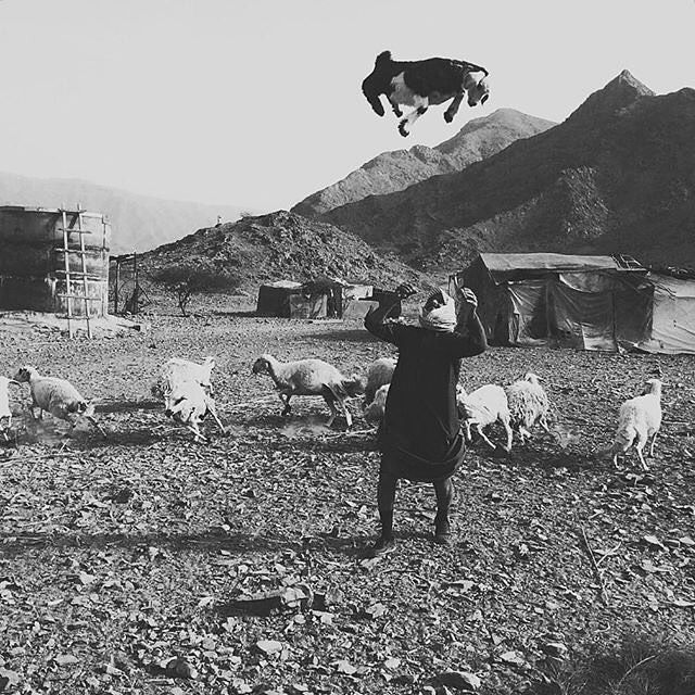 A Shepherd Playing With His Sheep In Mahayil Asir South Of Saudi Arabia Photo By Faisal Foxy1 In Mahayilasir راعي الأغنام ي Arab Culture Photo Arabic Jokes