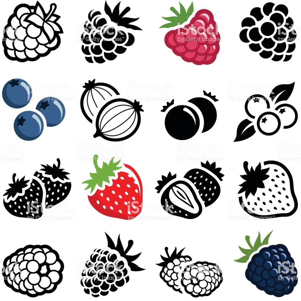 Berry fruit icon collection vector illustration em 2020