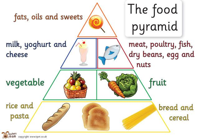 Teacher's Pet - Food pyramid set - FREE Classroom Display