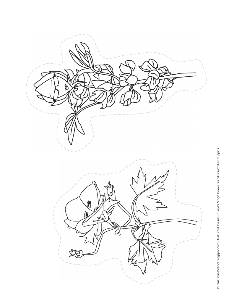 daisy lupe coloring sheet free coloring pages download xsibe mario