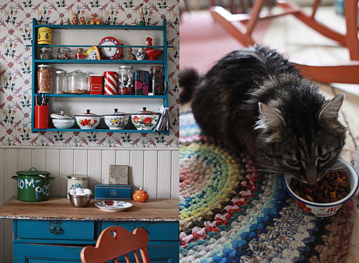 Gatos sempre fazem parte da decoração de uma casa, com seu jeito manhoso e fofo de ser!