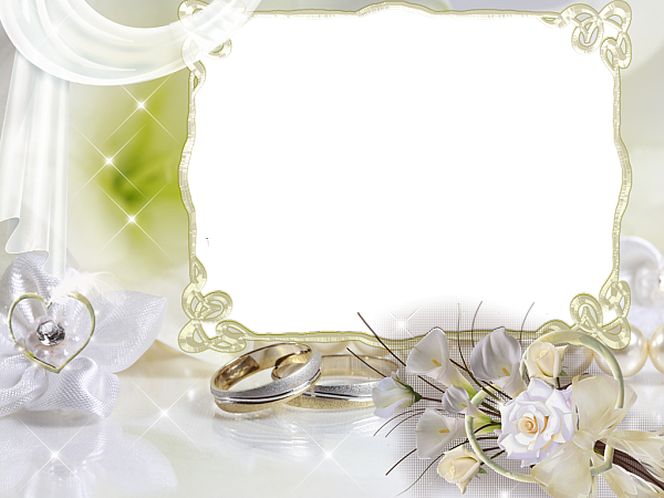 Beautiful Soft Wedding Transparent Frame Wedding Picture