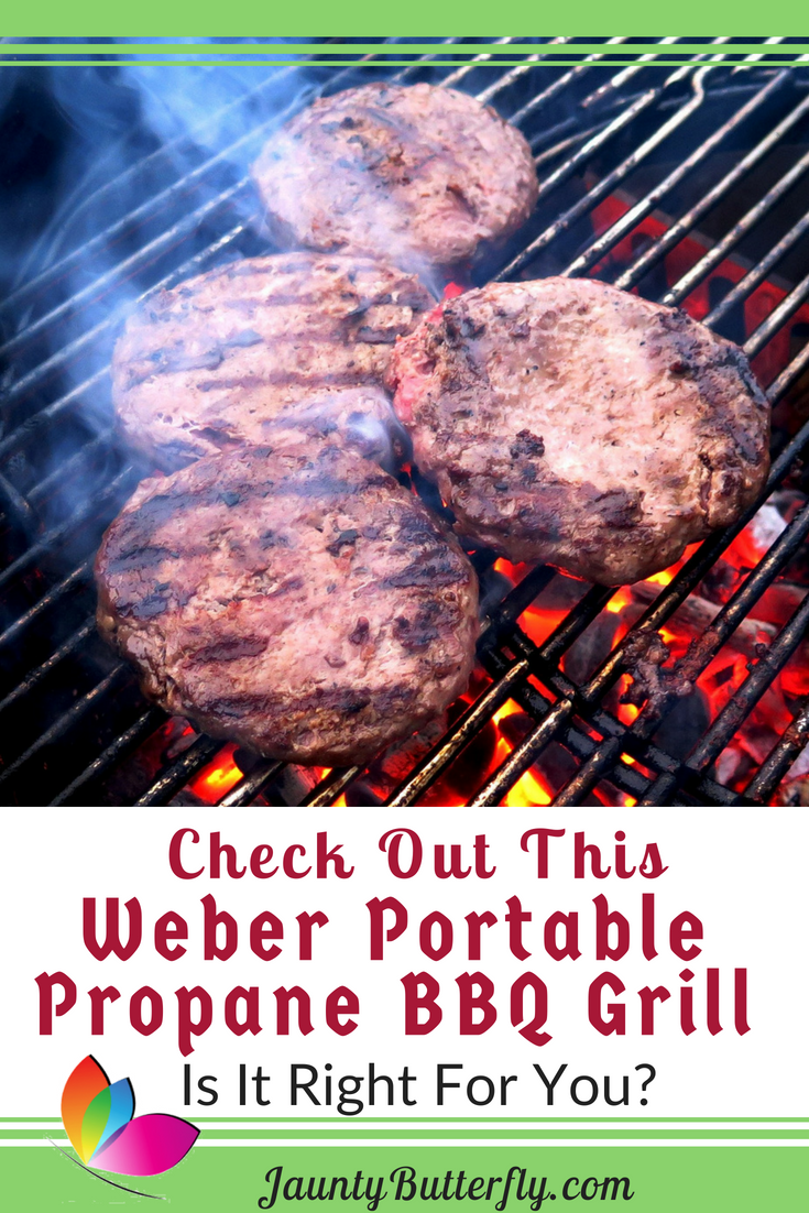 Weber Portable Gas Grill Review Jaunty Butterfly Gas Grill Reviews Portable Bbq Grill Grilling