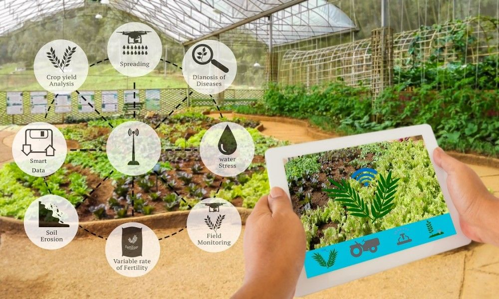 Smart Agriculture Sensors Helping Small Farmers and