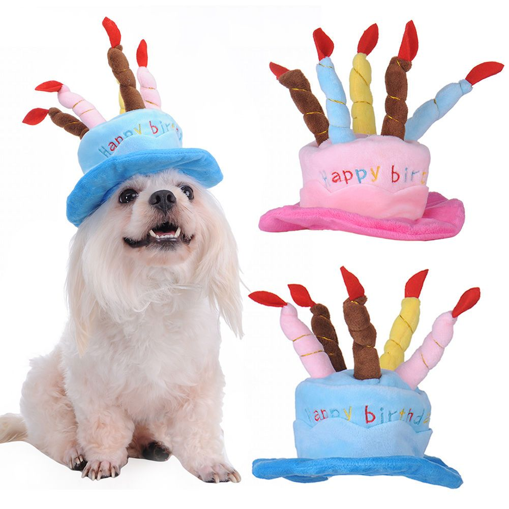 139 Gbp Puppy Pets Happy Birthday Celebration Cake Pet Hat