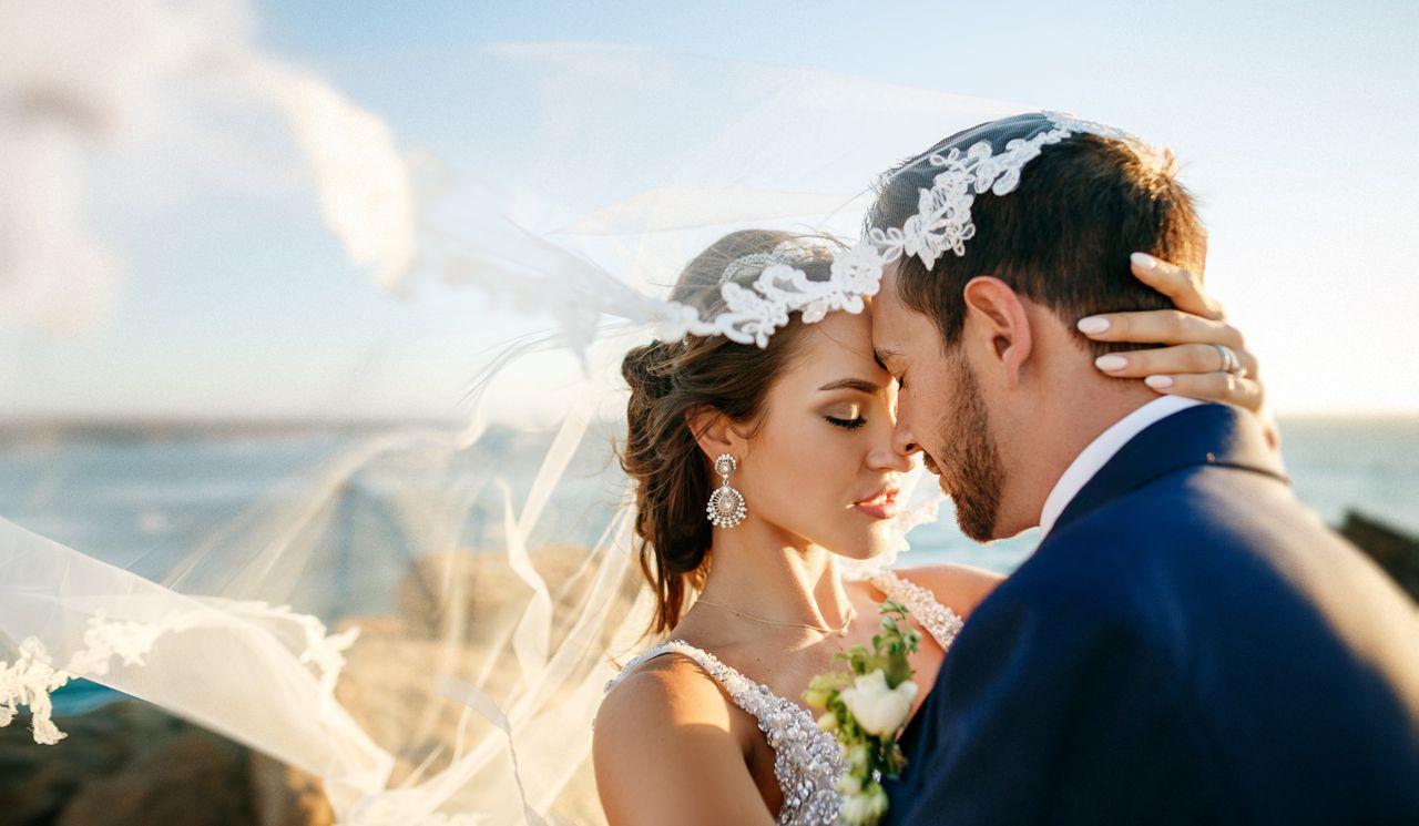 фотообои пауки качественные свадебные фото гаммы представлена разнообразными
