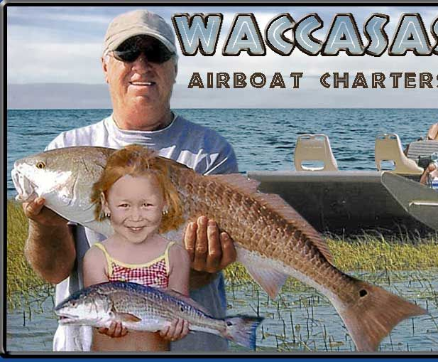 Waccasassa Bay Airboat Charters Airboat Fishing Cedar