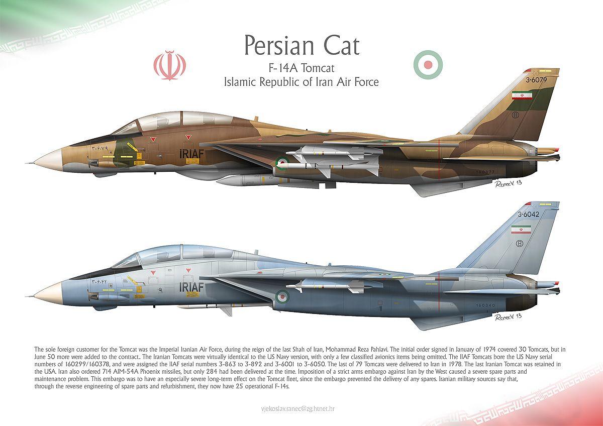Antes da Revolução Iraniana, vários F-14 foram exportados para o Irã.