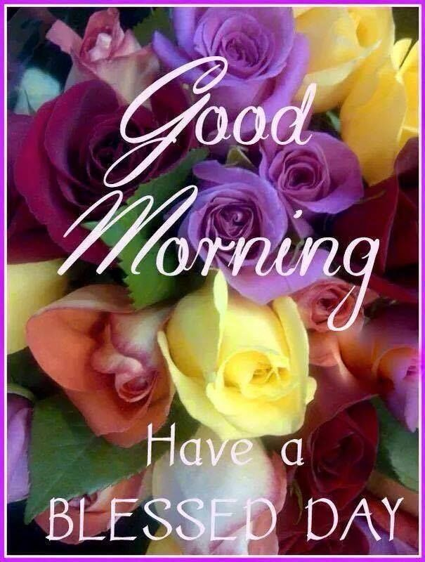 Good Morning Have A Blessed Day Enjoy The Sunshine Morning Quotes Good Morning Quotes Good Morning Greetings