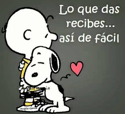 ✿⊱╮Teresa Restegui http://www.pinterest.com/teretegui/✿⊱╮