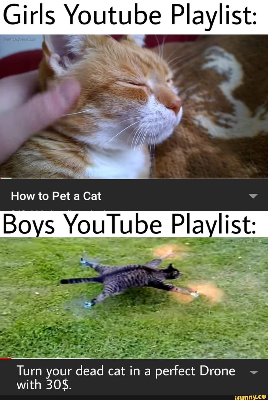 Girls Youtube Playlist Boys Youtube Plavllst F A Turn Your Dead Cat In A Perfect Drone With 30 Ifunny Cute Memes Funny Relatable Memes Girl Memes
