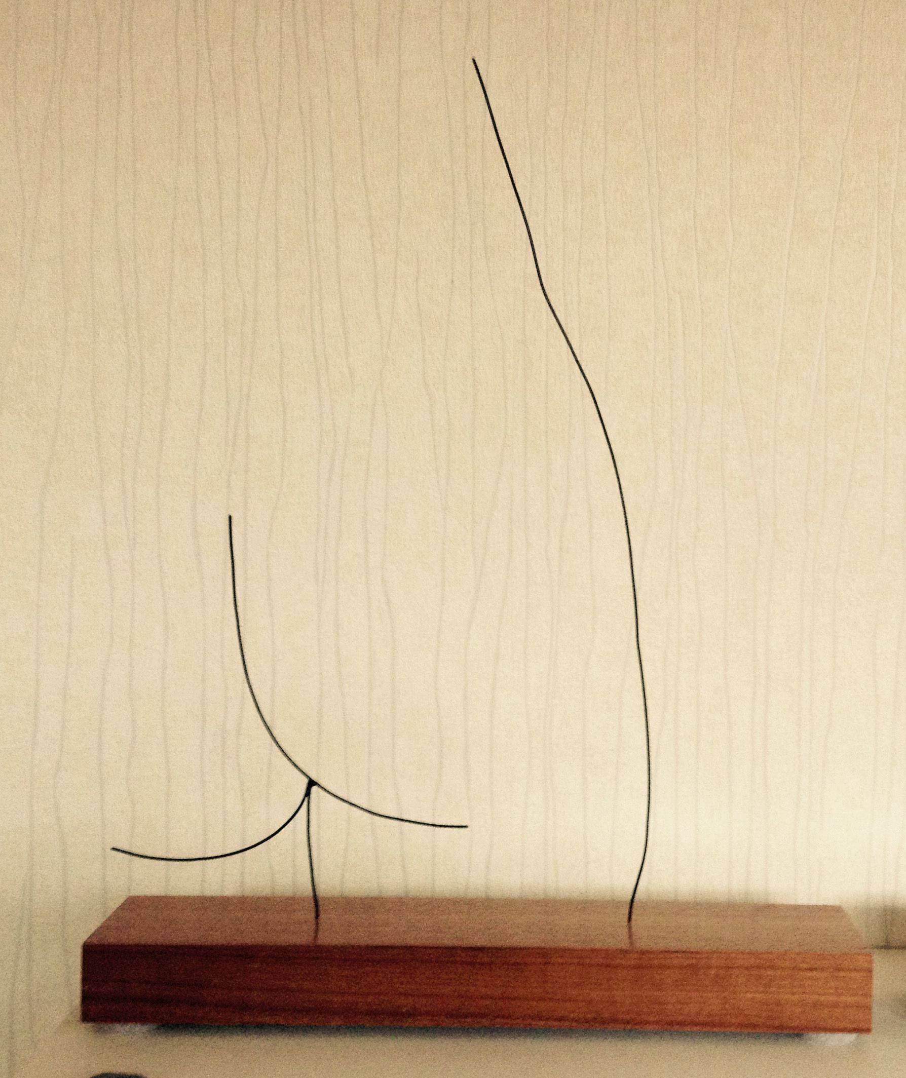 Wire craft - Wire Picasso (1)