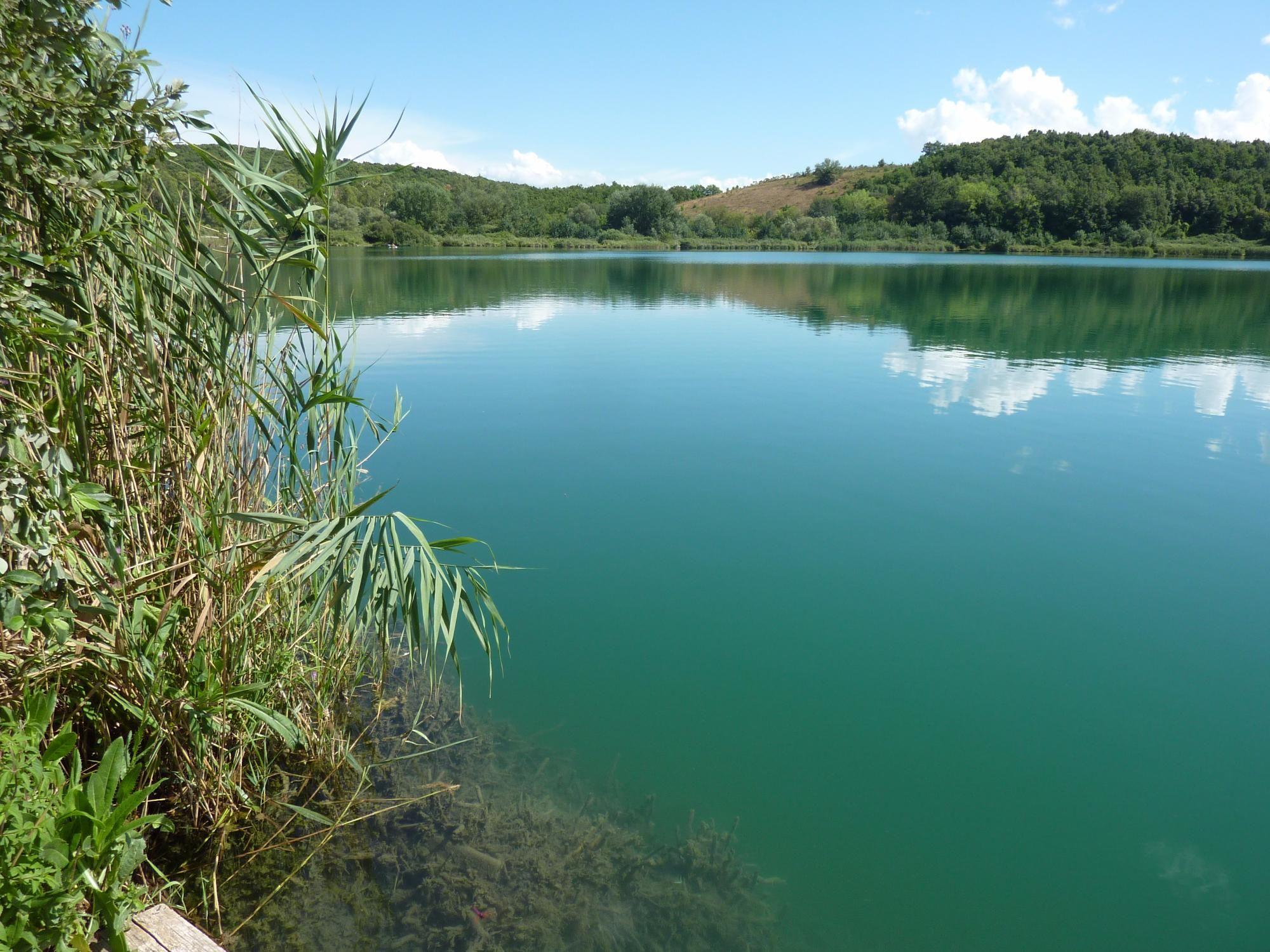 Lago dell'Accesa (Massa Marittima, Italy): Top Tips Before You Go - TripAdvisor