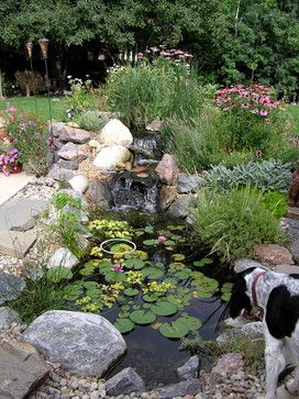 Small Pond Landscaping Design Ideas, Pictures, Remodel and Decor