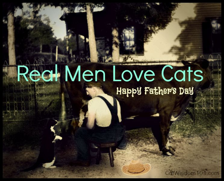 Fathers day for cat lovers cat animal kingdom and animal real men love cats happy fathers day sciox Gallery