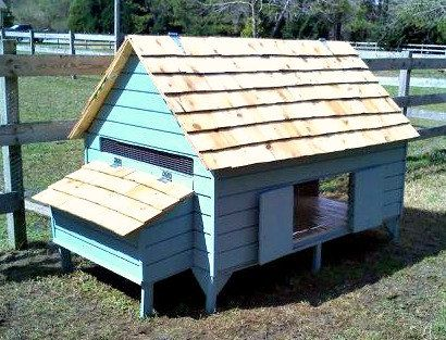 Chicken Coop Plans - New England Cape Style Poultry Duck PDF ...