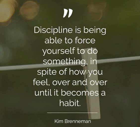 Discipline Quotes Adorable Discipline Quotes And Sayings  Discipline  Pinterest  Discipline