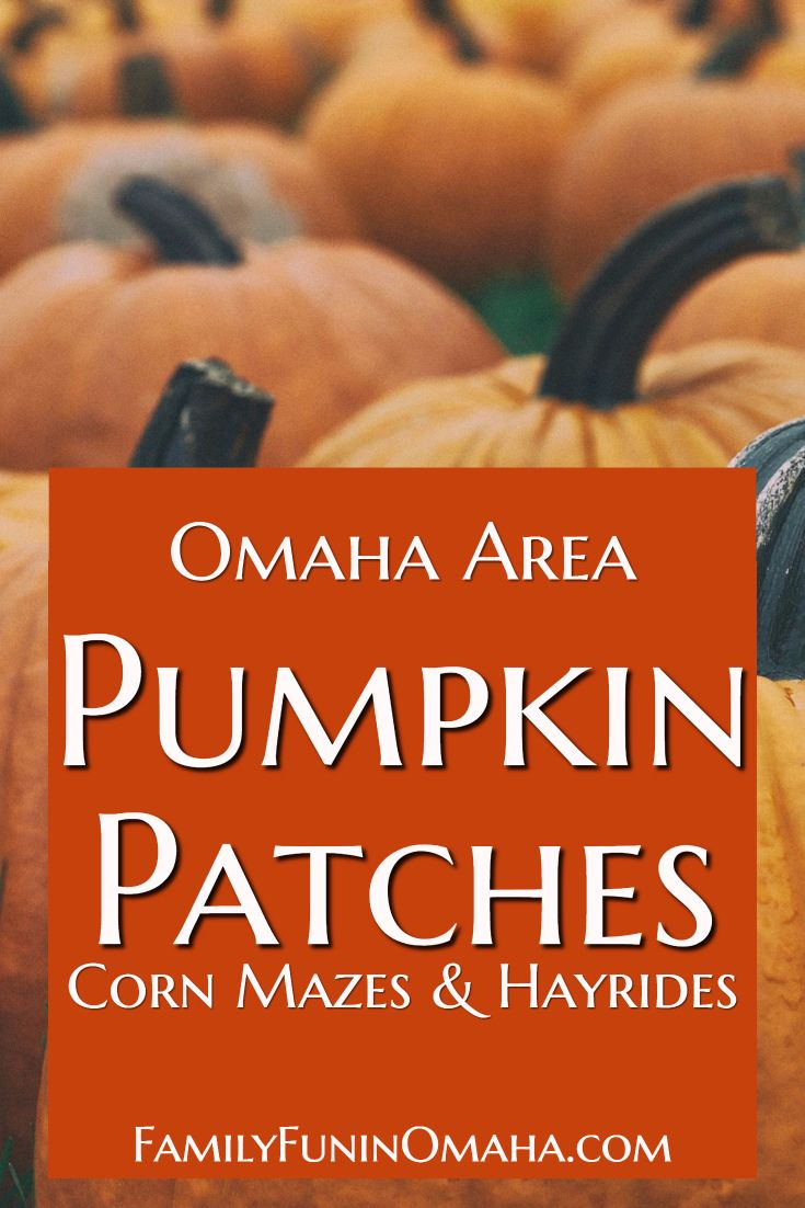 17 Of The Best Omaha Area Pumpkin Patches Family Fun In Omaha Omaha Visit Omaha Midwest Vacations