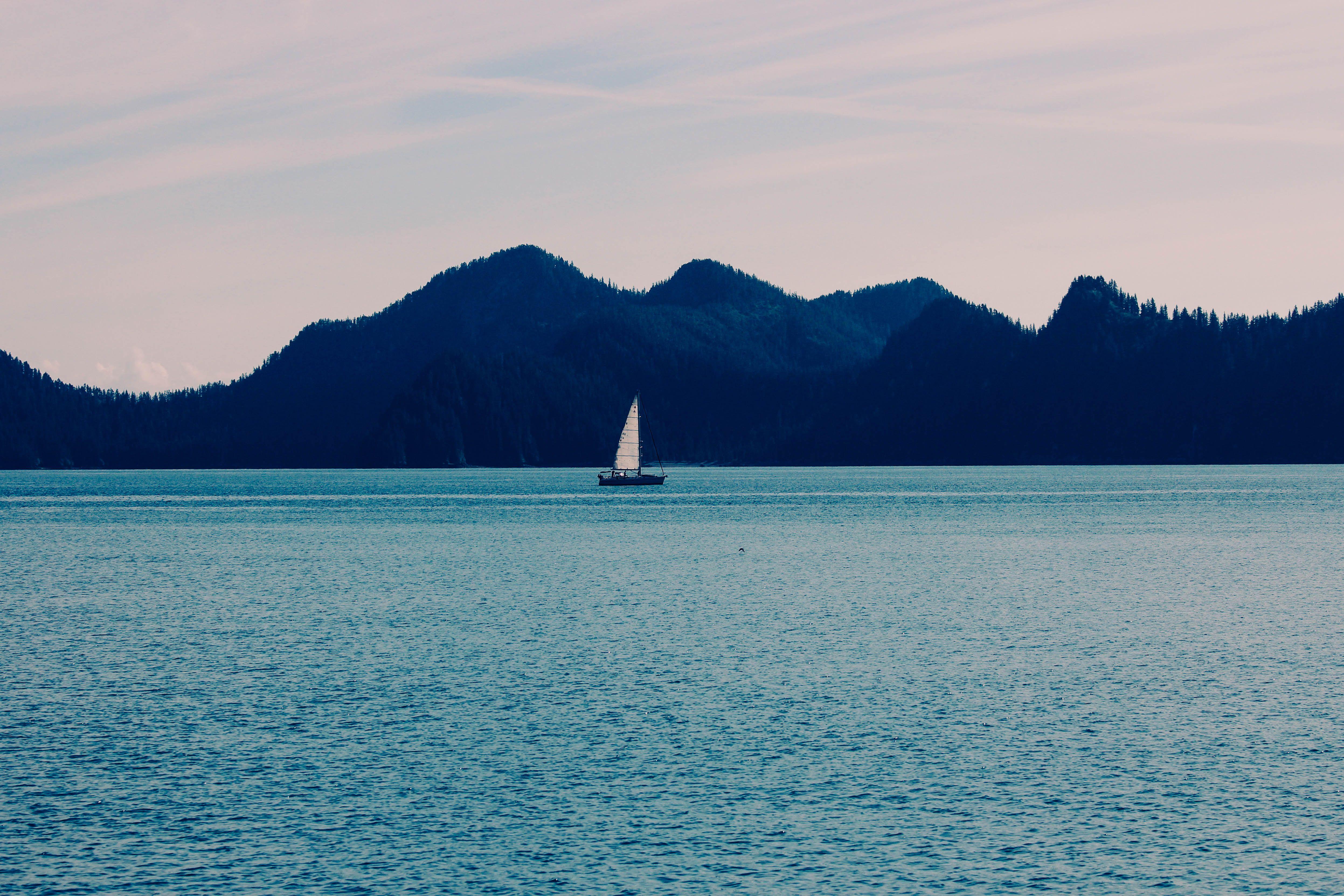 #alaska #seward Off a wildlife cruise