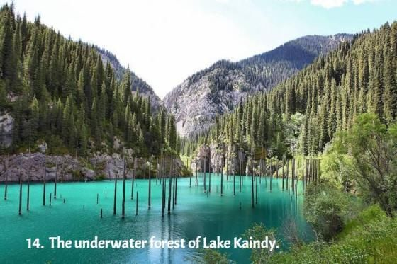 A #BeautifulSpectacle : The underwater forest of Lake Kaindy in Kazakhstan
