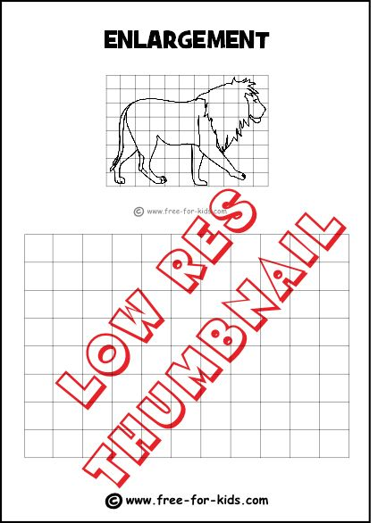 Enlargement Drawing Grid with Lion | Teaching: Maths | Pinterest