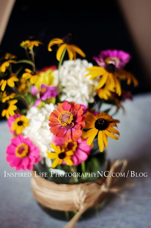Inspired Life PhotographyNC.com