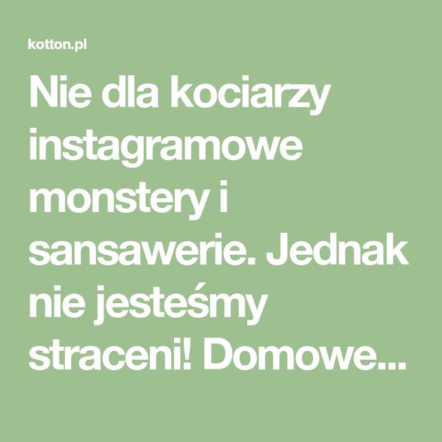 Nie Dla Kociarzy Instagramowe Monstery I Sansawerie Jednak Nie Jestesmy Straceni Domowe Rosliny Bezpieczne Dla Kotow Lista Math Math Equations