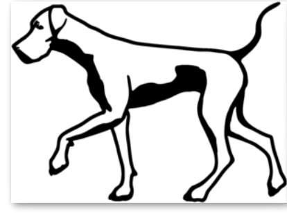 Great Dane Outline Great Dane Dogs Great Dane Dane Dog