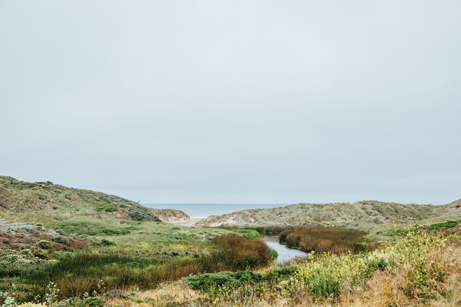 Favorite destination on my California Road trip: Tomales Bay - Kehoe Beach | Emilie Waugh Photography