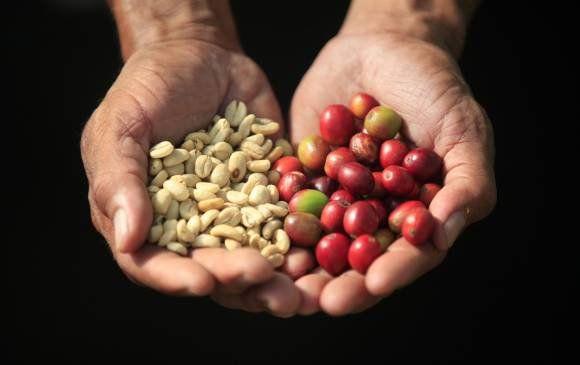 Hoy se celebra el día nacional del #café, la bebida caliente favorita de los #colombianos