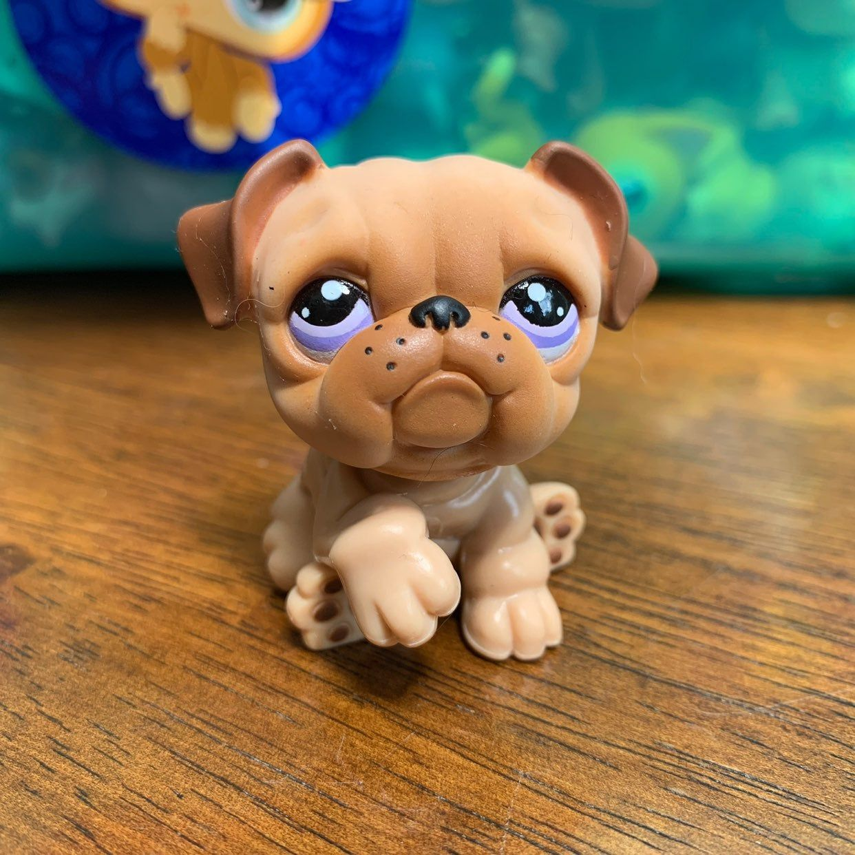 Littlest Pet Shop Dog Bundle With Other Pets To Save Message Me With Any Questions Or Offers Littlest Pet Shop Pet Shop Little Pets