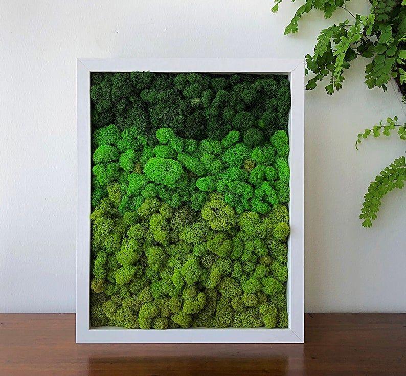 Moss Frame 15 X12 Ombre Greens Moss Wall Art Wall Decor Home