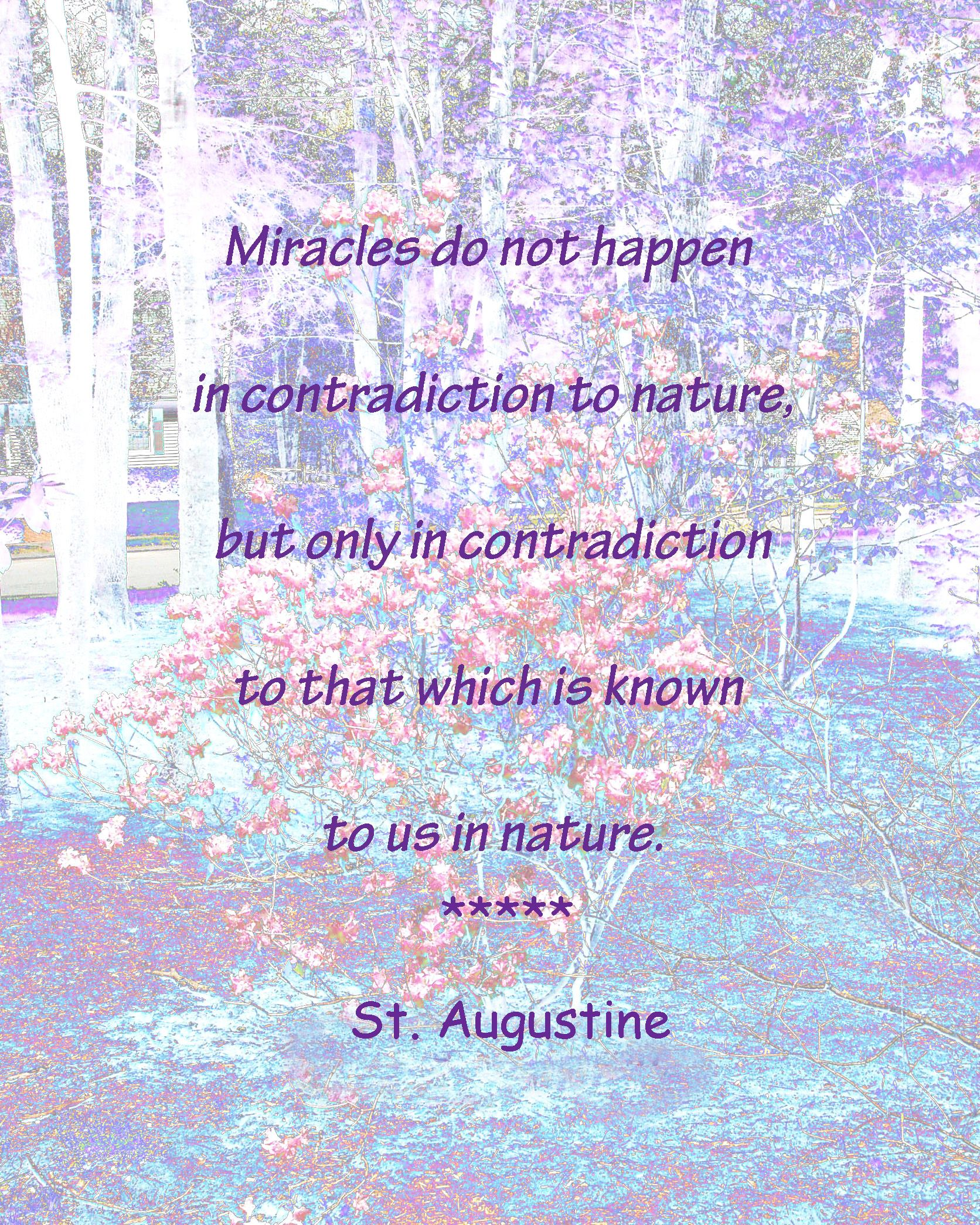 St. Augustine Quote.