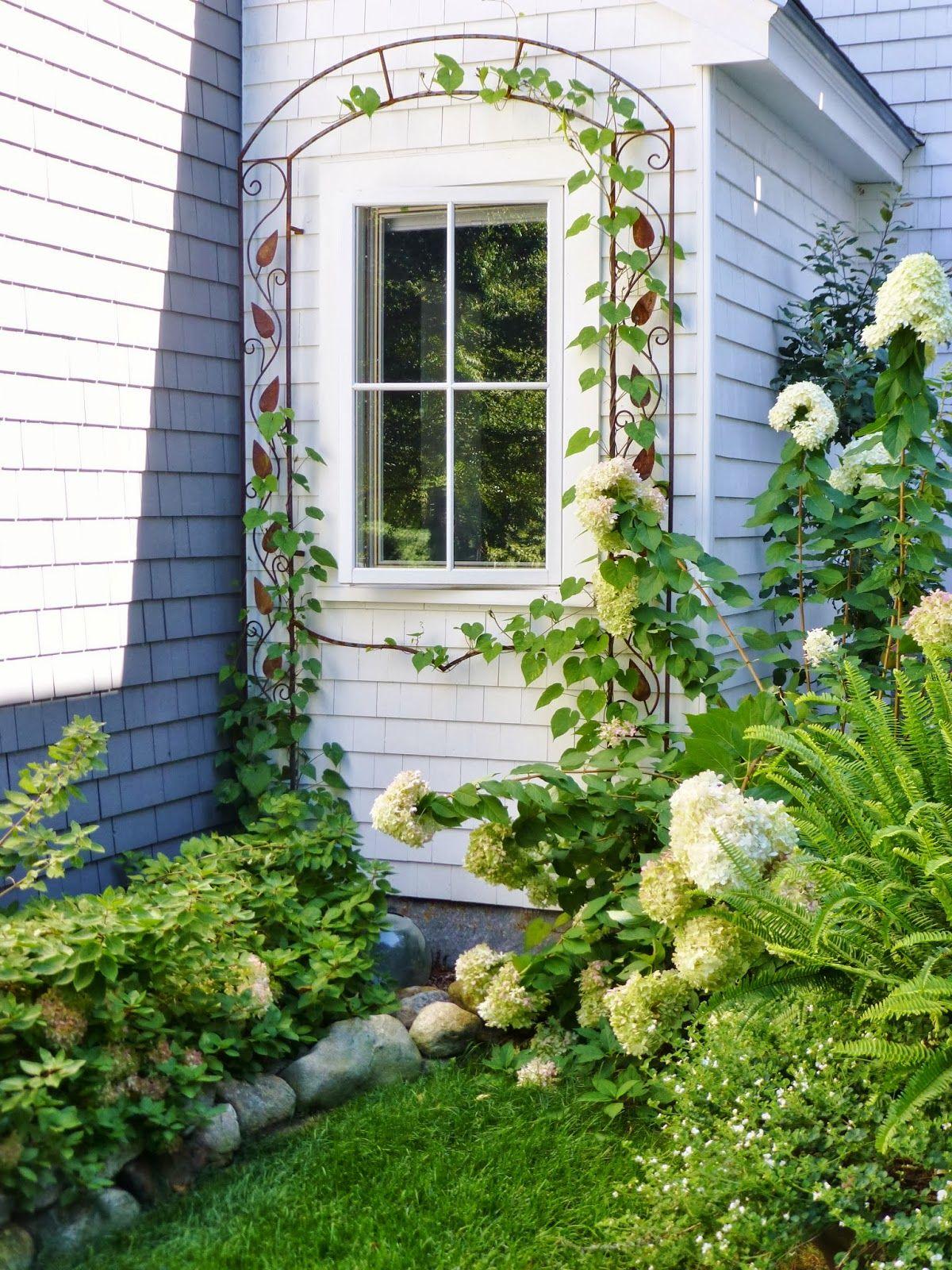 Wrought Iron Arbor | Landscape | Pinterest | Arbors, Wrought iron ...