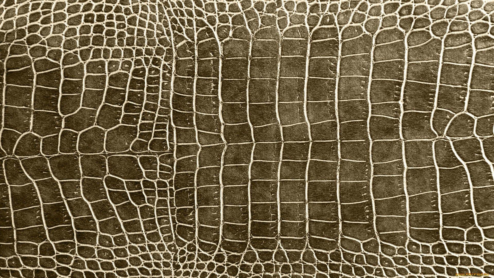Обои texture. Разное foto 14