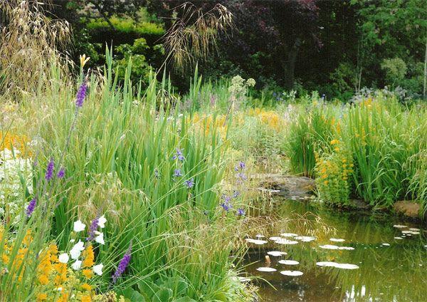 Internet gardens water features what 39 s new gardening for Natural garden pond design
