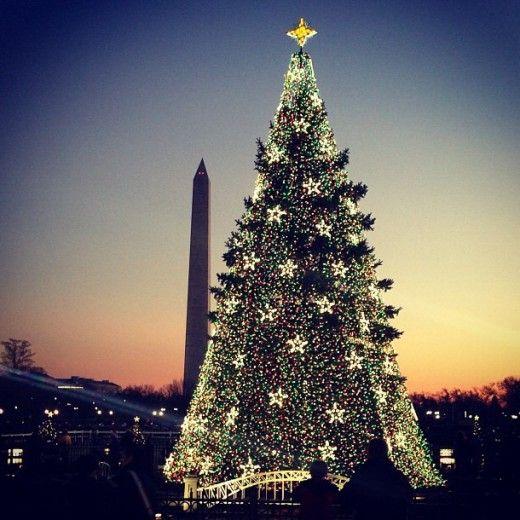 Alberi Di Natale Belli.I 20 Alberi Di Natale Piu Belli Del Mondo Idee Per L Albero Di Natale Alberi Di Natale Natale