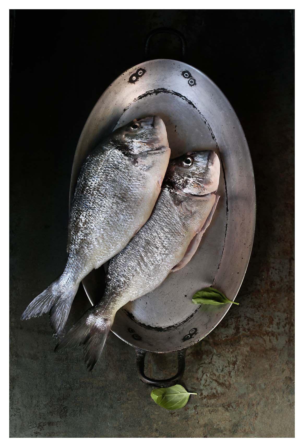 12+ Dorado fish animal crossing ideas in 2021